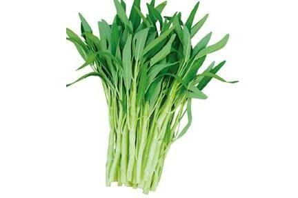 空心菜是吸收农药和重金属最厉害的一种蔬菜?
