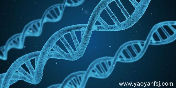 上了趟太空,8.7%的基因发生永久突变?