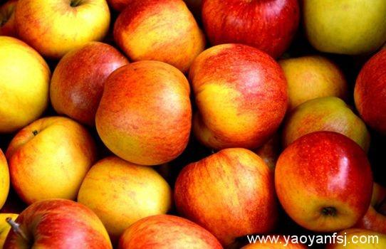 三日苹果减肥法?
