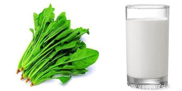 菠菜与牛奶同吃会引起痢疾?