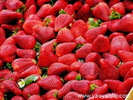草莓被某组织评为最脏的水果