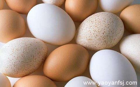 食用长斑鸡蛋会引起食物中毒?