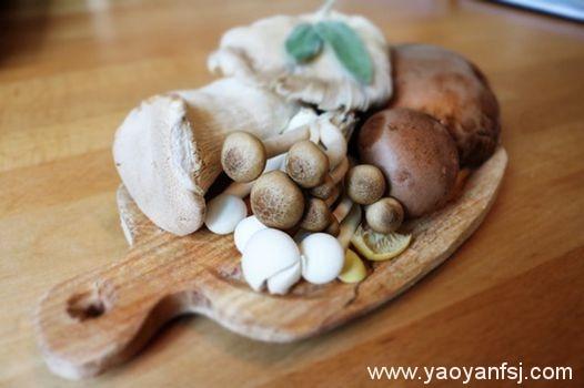 蘑菇对铅、汞等重金属的富集能力强,最多可达到100多倍?