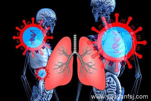 中国武汉暴发的神秘疾病,已被证实为新型SARS病毒